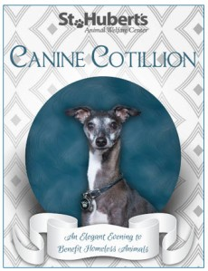 Canine Cotillion